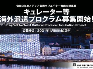 Project to Support Emerging Media Arts Creators, Program for Next Cultural Producer Incubating Project
